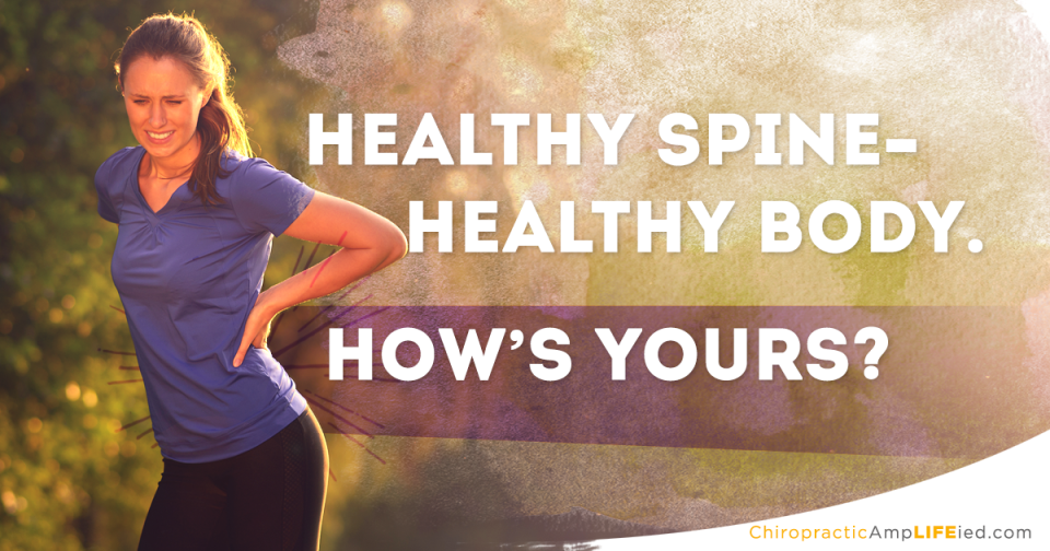 how is your spine